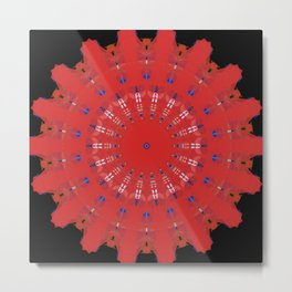 Red Coaster Metal Print