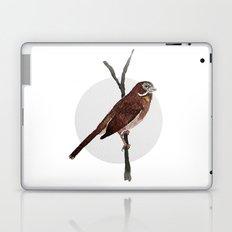 Messenger 002 Laptop & iPad Skin