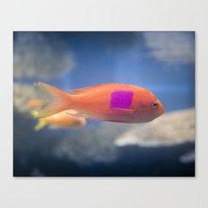 Color Block Fish Canvas Print