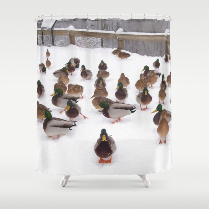 Winter Ducks Shower Curtain