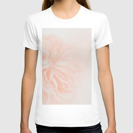 Light Peach Rose #3 #floral #art #society6 T-shirt