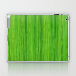 Green Melon Colored Vertical Stripes Laptop & iPad Skin