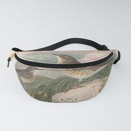010 Rock Pipit anthus obscurus4 Fanny Pack
