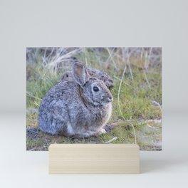 Spring Bunny Mini Art Print
