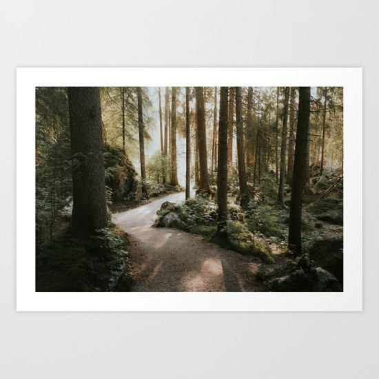 Lost in the Forest - Landscape Photography Art Print