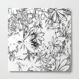 Lupin Leaves (sketch) Metal Print
