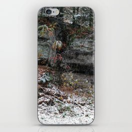 A Fall Day in New England iPhone Skin