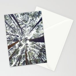 Light Through the Trees Stationery Cards