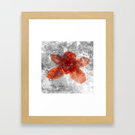 "Red Flower 10""  Framed Art Print"
