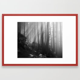 The Great Forest Framed Art Print