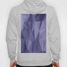 Vertices 10 Hoody