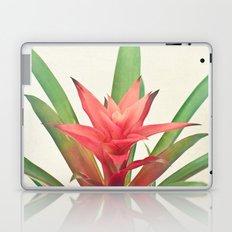 Bromelia Laptop & iPad Skin