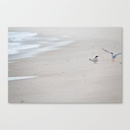Yelling at each other Canvas Print