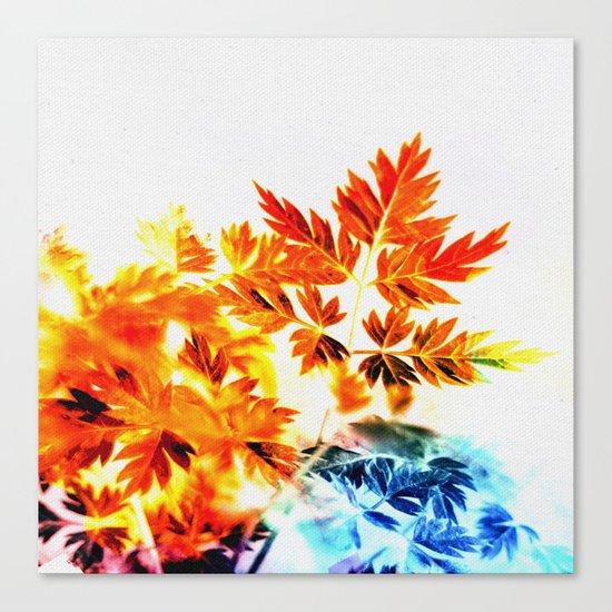 Enchanted Fern Leaves Canvas Print