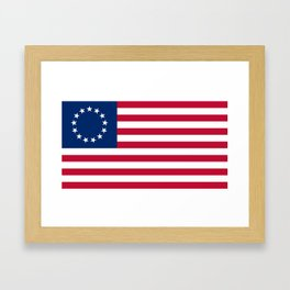 United States (Betsy Ross) Flag Framed Art Print