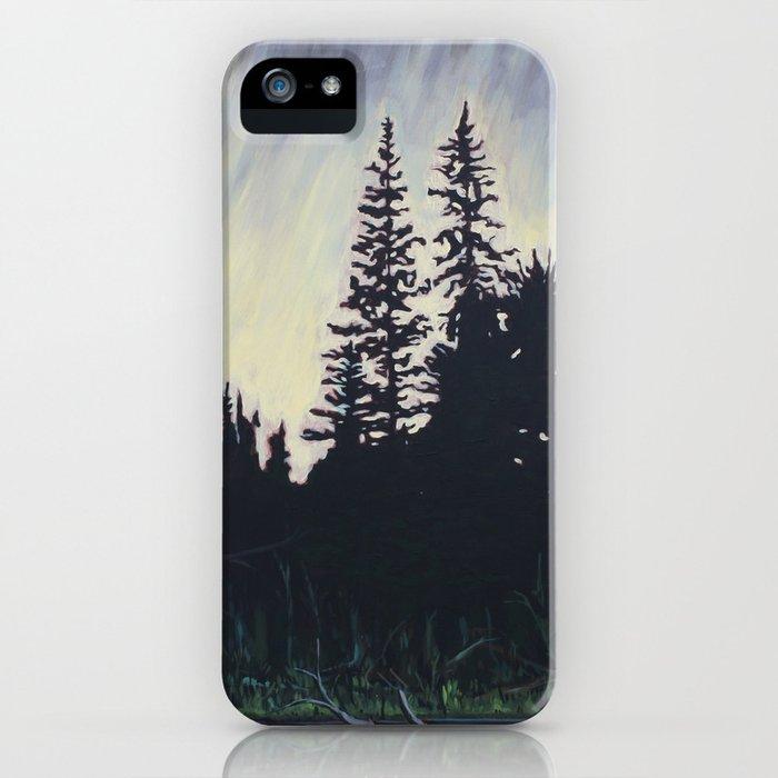 After the Storm – Evening, Algonquin Park iPhone Case