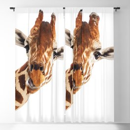 Giraffe Portrait // Wild Animal Cute Zoo Safari Madagascar Wildlife Nursery Decor Ideas Blackout Curtain
