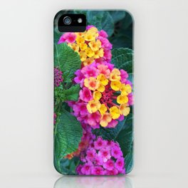 Yellow and Pink Lantanas iPhone Case