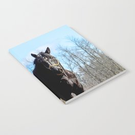 Percheron Horse by Teresa Thompson Notebook