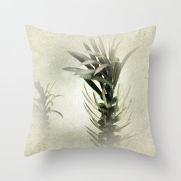 Australian Native Bottlebrush Throw Pillow