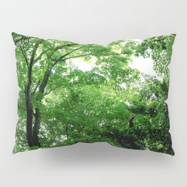 Travel Photography : Los Tres Ojos Forest - Dominican Republic Pillow Sham