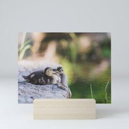 Baby Duck Squad Mini Art Print