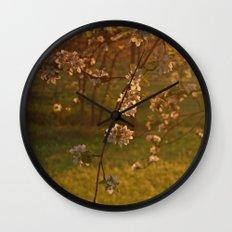 Golden Light over Apple Blossoms Wall Clock