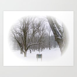 Winter Sleep Art Print
