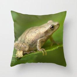 Spring Peeper Throw Pillow