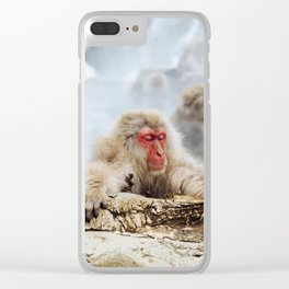 The Japanese macaque also known as the snow monkey Clear iPhone Case