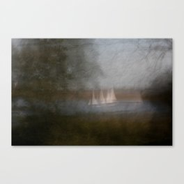 Movement in Nature VI Canvas Print