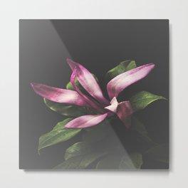 Magnolia Portrait Metal Print