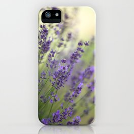 #Dream #beautiful #Garden #Lavender iPhone Case
