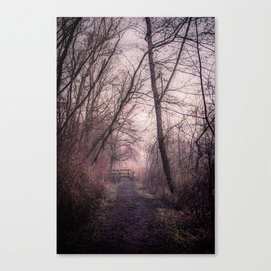 the path over the bridge Canvas Print