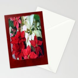 Mixed color Poinsettias 1 Blank P5F0 Stationery Cards
