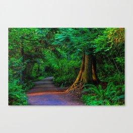 Magic Moment Canvas Print