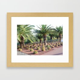 Tropical landcsape with cactus and Palm trees Framed Art Print