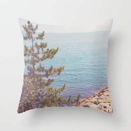 Ocean Beyond the Shore Throw Pillow