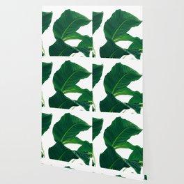 Green Leafs (Color) Wallpaper