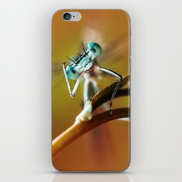 Blue dragonfly on pink flower iPhone Skin