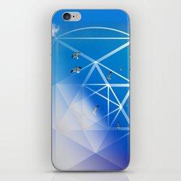 Gulls in Hexagram Flight iPhone Skin