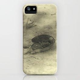 Crab on Beach iPhone Case