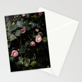 Pink Camellias Stationery Cards