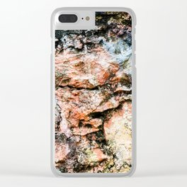 opposes speculation Clear iPhone Case