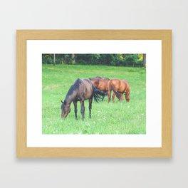 Horse Herd // Horses Framed Art Print