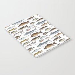 A Few Freshwater Fish Notebook