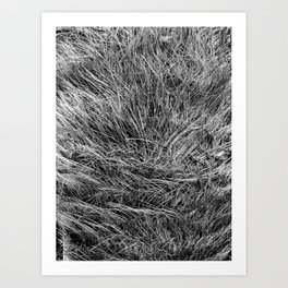 This is not Hair. Art Print