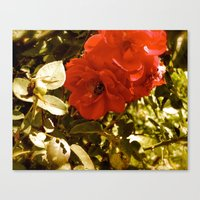 romance Canvas Prints featuring Romance by Tiffany Scully