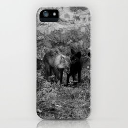 Love is All I can Give iPhone Case