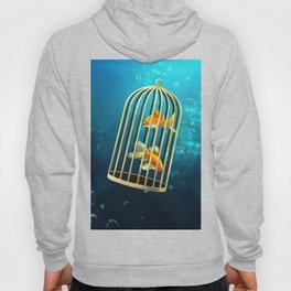 Safe place Hoody